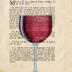 Vino Rosso – 464